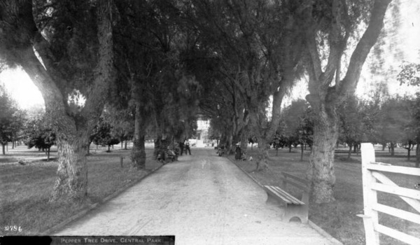 L.A.'s Central Park -- located on the west side of Central Avenue between 49th and 50th streets