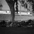 Homeless encampment in South L.A. | Photo by Stephanie Monte