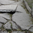 A cracked sidewalk in South L.A. is hazardous to pedestrians. | Kate Guarino
