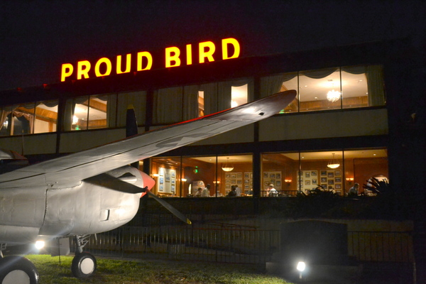 The Proud Bird | Katherine Davis